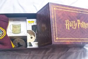 Wootbox : Harry Potter