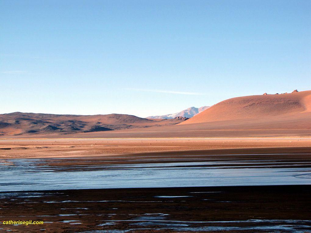 Album - Argentine-Altiplano