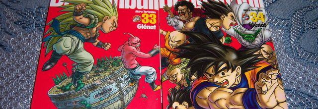 Dragon Ball Perfect édition tomes 33 et 34