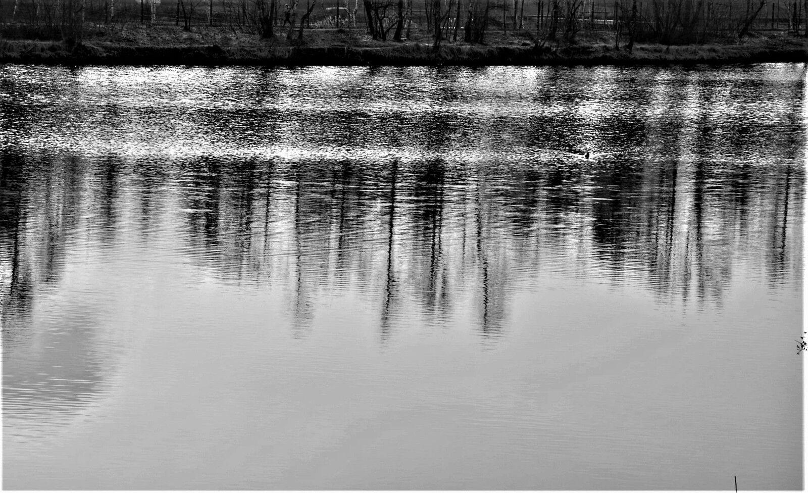 Reflektionen - Reflections S/W
