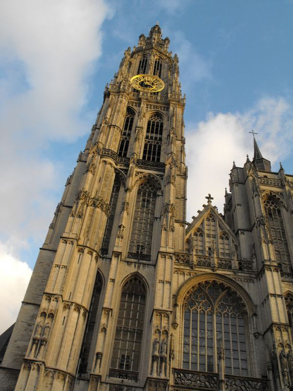 43 - Anvers