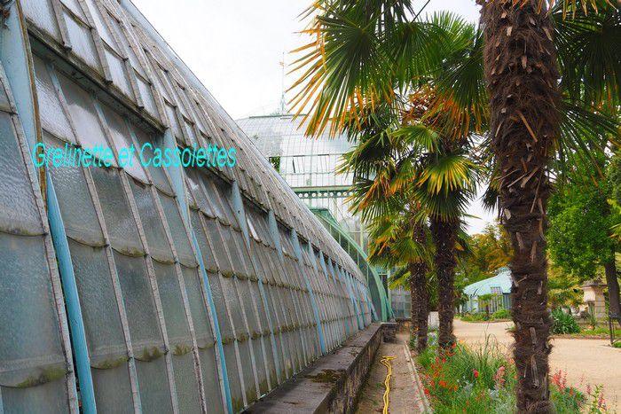 Le Jardin Botanique et les Serres d'Auteuil, Première partie