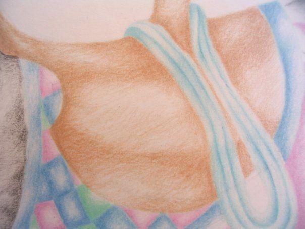 crayons de couleur et crayon sur  canson et calquz
