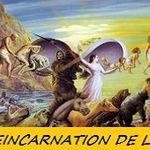 LA RÉINCARNATION DE L'ÂME