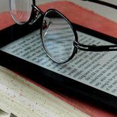 Le point de vue des bibliothécaires expérimentateurs de PNB | Lettres Numériques