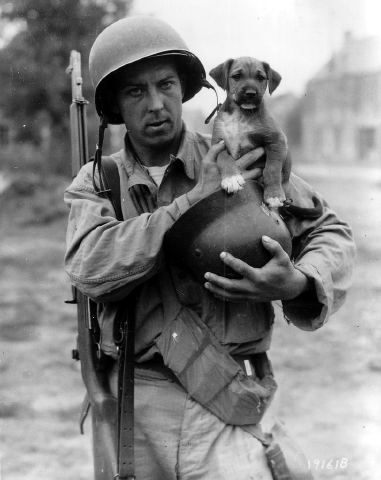Le soldat de première classe de l'armée américaine, Joseph Day (Joseph E. Day) avec un chiot nommé . «Invasion» .. Évidemment, le chiot doit son nom à l'opération de l'invasion des troupes alliées en Normandie. Dans la main un casque allemand.., France.