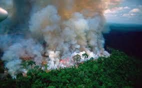 Amazonie, notre maison brûle, ne regardons pas ailleurs!