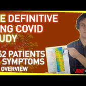The Definitive Long Covid Study | 3,762 Patients, 205 Symptoms - An Overview