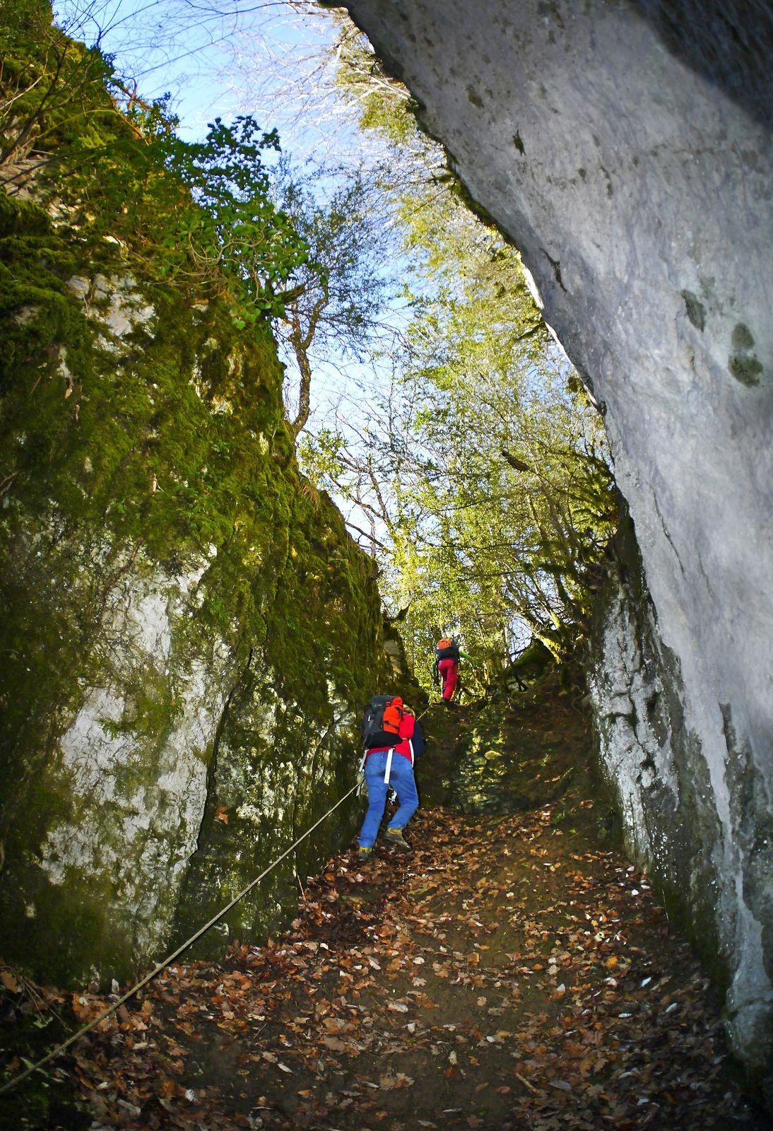 À gauche de la grotte, on peut monter dans cette faille pour aller plus haut dans la forêt. Lorsque je grimpais sur la falaise de la Goulandière, je faisais l'approche par là depuis la route au niveau des Antis. Depuis, une corde fixe est apparue...