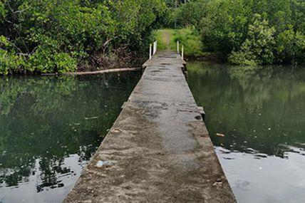 Nouvelle-Calédonie la 1ère : «Paroles et Partage » à Touho !