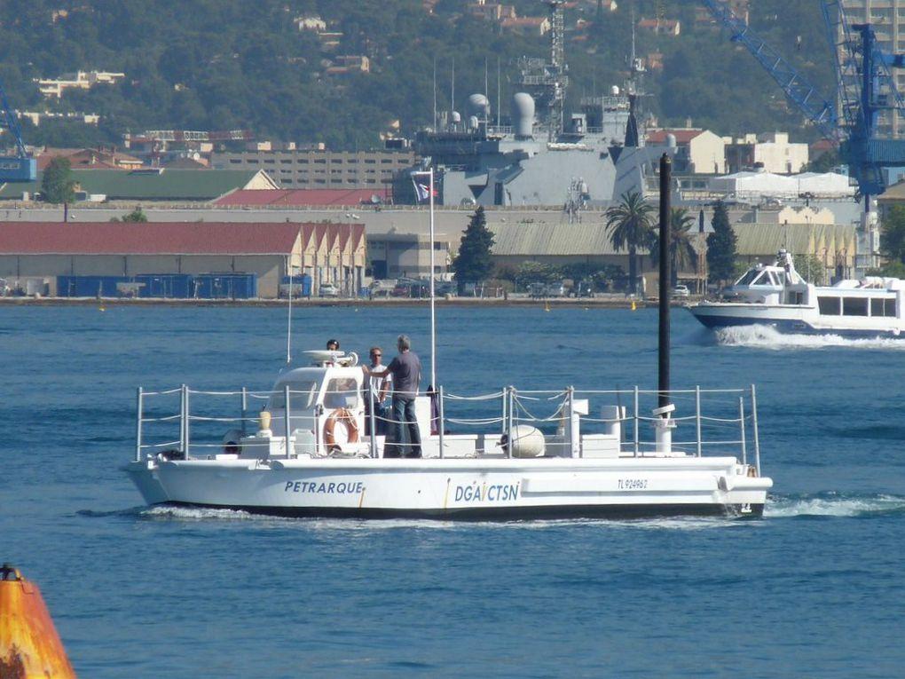PETRARQUE , Navire de la DGA ('Direction  Générale de  l'Armement) en petite rade de Toulon le 27 juin 2012