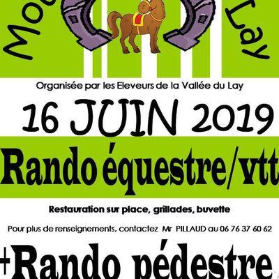 Rando aux Moutiers sur le Lay (85) dimanche 16 juin 2019