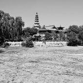 Nature alerte: 27/08/2014...Un lac de 24.000m2 disparaît du jour au lendemain en Chine