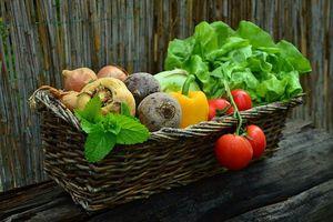 Rendement des principaux légumes