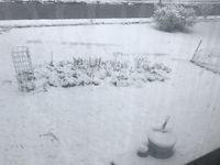 Neige, la plus grosse cette annee!