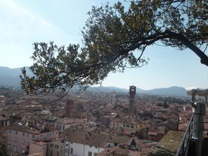 Poetic trip - There will be a time Lucca