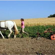 L'agro-écologie, l'agriculture biologique, peut, pourrait... pourrait peut-être nourrir le monde