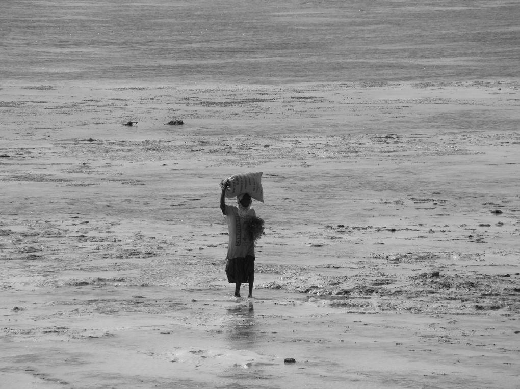 Album - Tanzanie