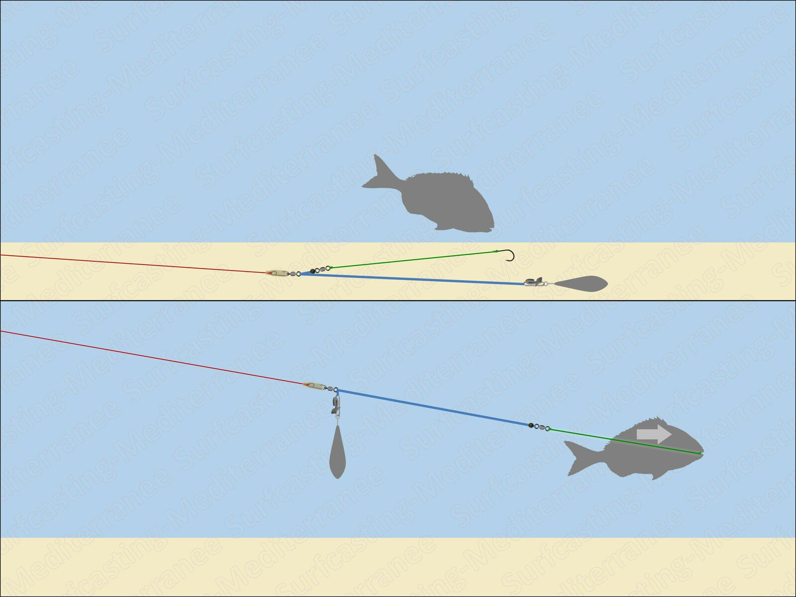Montage surfcasting Clippé coulissant (Pulley Rig)