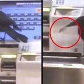 Au Japon, un corbeau vole une carte de crédit pour s'acheter un ticket de métro