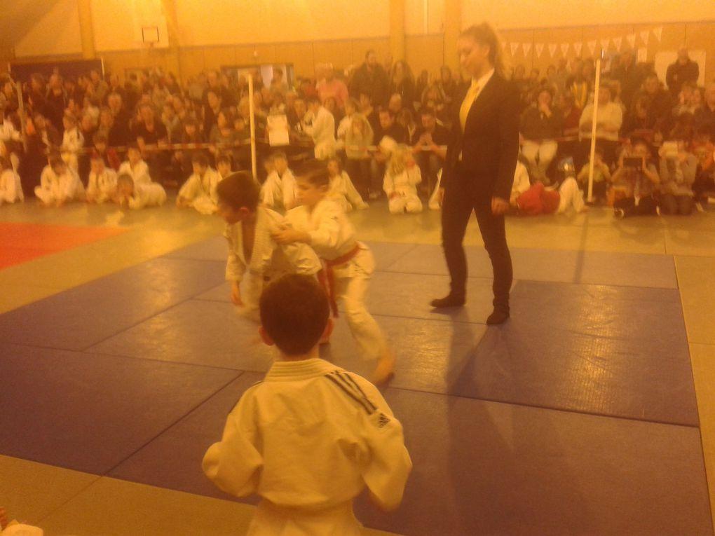 2ème Coupe M. CATRY du Judo Club Athies sous Laon les 30 et 31/01/16