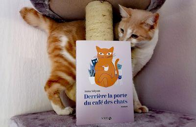 Roman Derrière la porte du café des chats