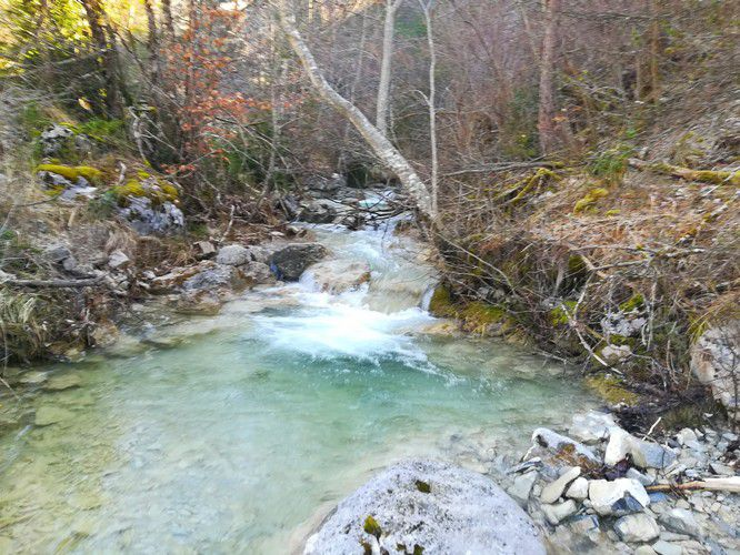 Le ruisseau du matin