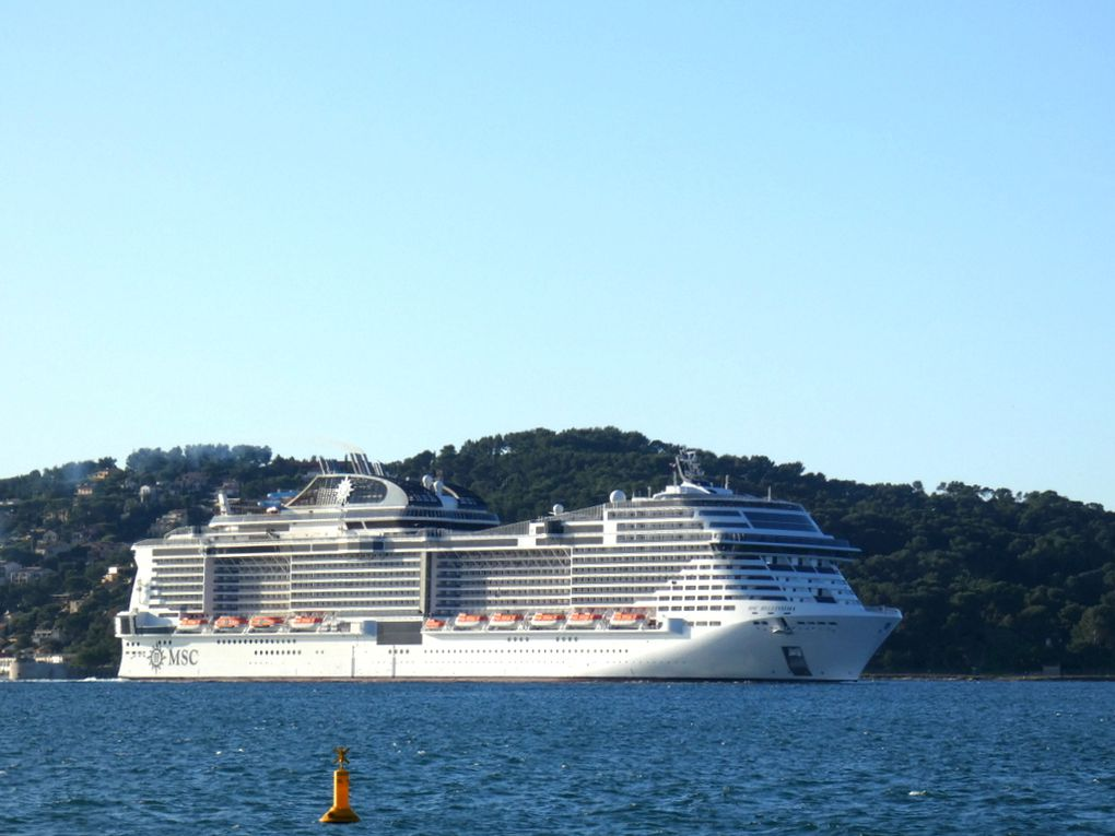MSC BELLISSIMA , arrivant en petite rade de Toulon et se dirigeant vers  la Seyne sur Mer le 12 novembre 2018