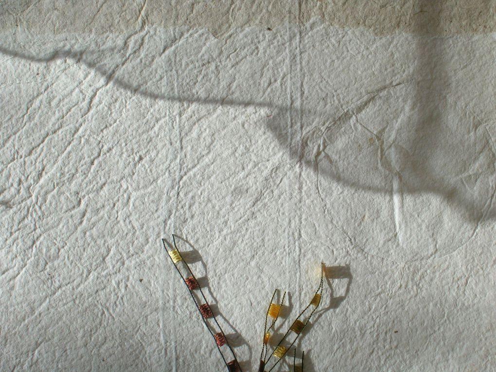 Faits de fibres textiles ou papetières de cailloux , de rouille, .. de rencontres et de bribes de voyages  .......et surtout de rêves Ce sont mes carnets  parfois blancs parfois  remplis de textures et de sensations , ils sont en devenir .