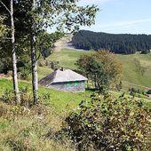 Le Chemin de campagne (Heidegger) - fredericgrolleau.com