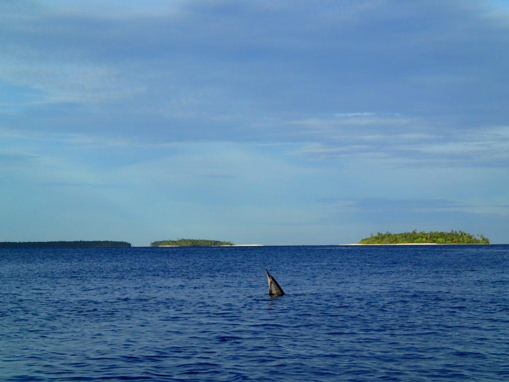 Océan Indien Madagascar