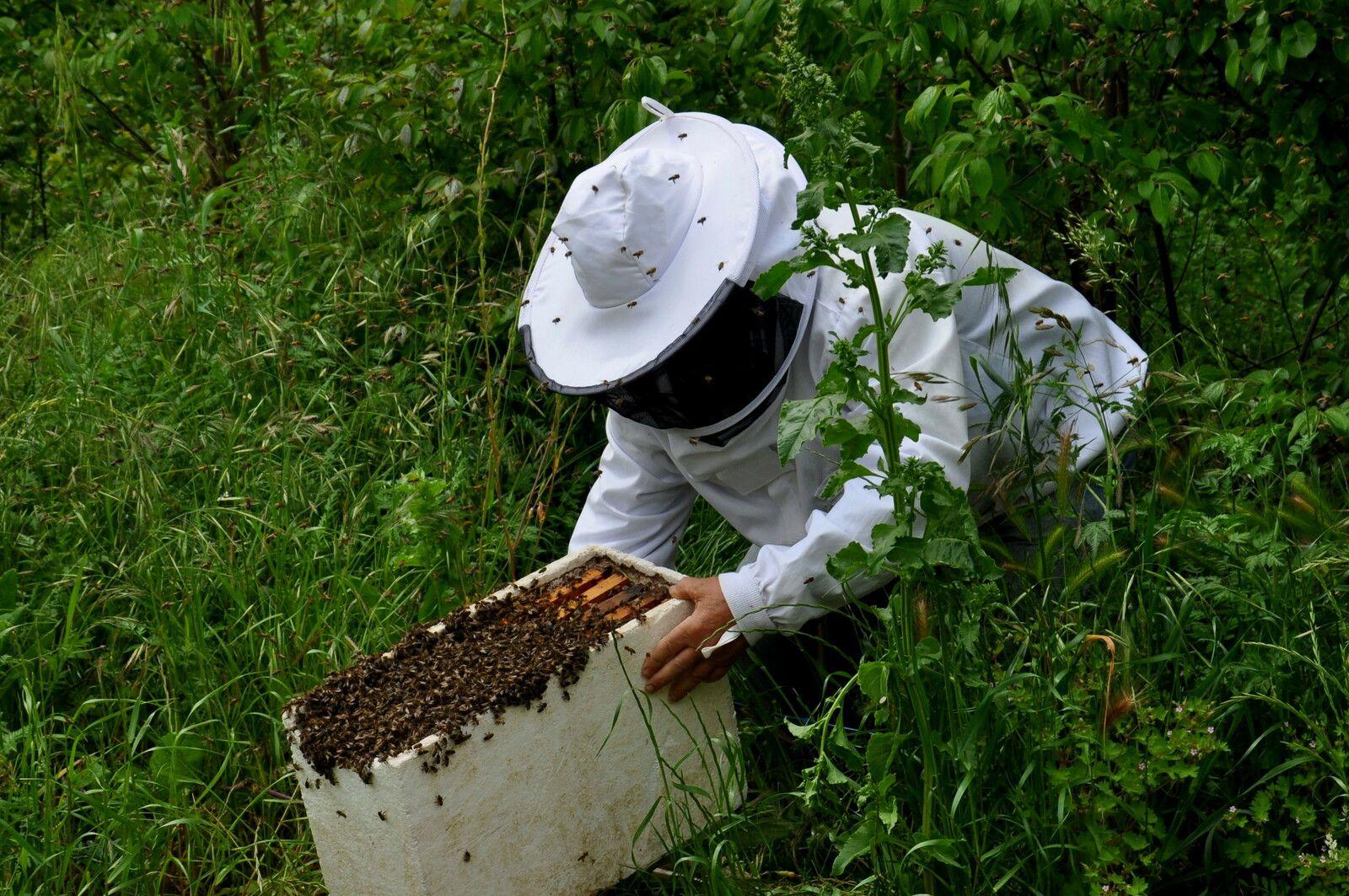André avec une ruche.