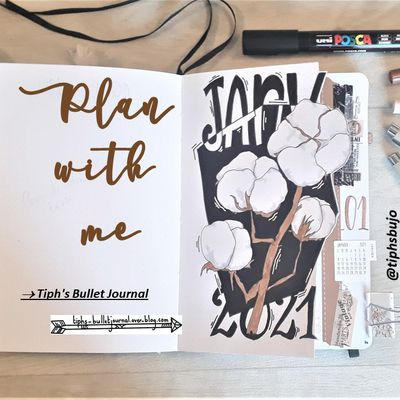 Plan with me Janvier 2021