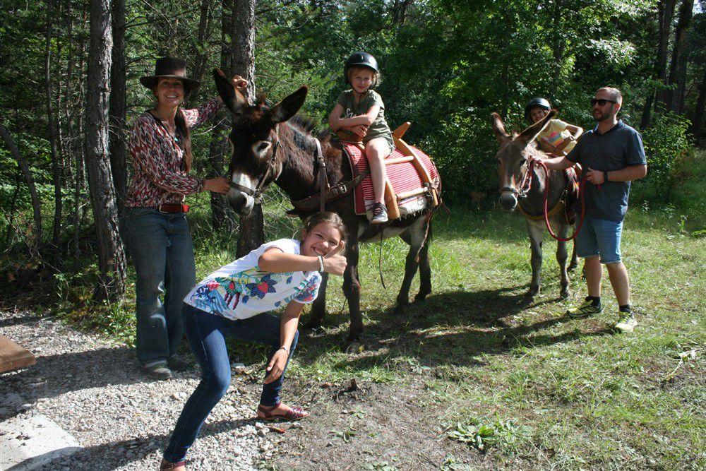 Beauvezer  : promenades à dos d'ânes pour le marché