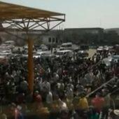 Cum au ajuns sezonierii români să umple avioanele spre Germania. Arafat: Solicitarea a venit pe cale diplomatică. Nimeni nu a crezut că vor fi chemați 2.000 într-o singură zi