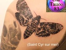 tatouage papillon sphinx