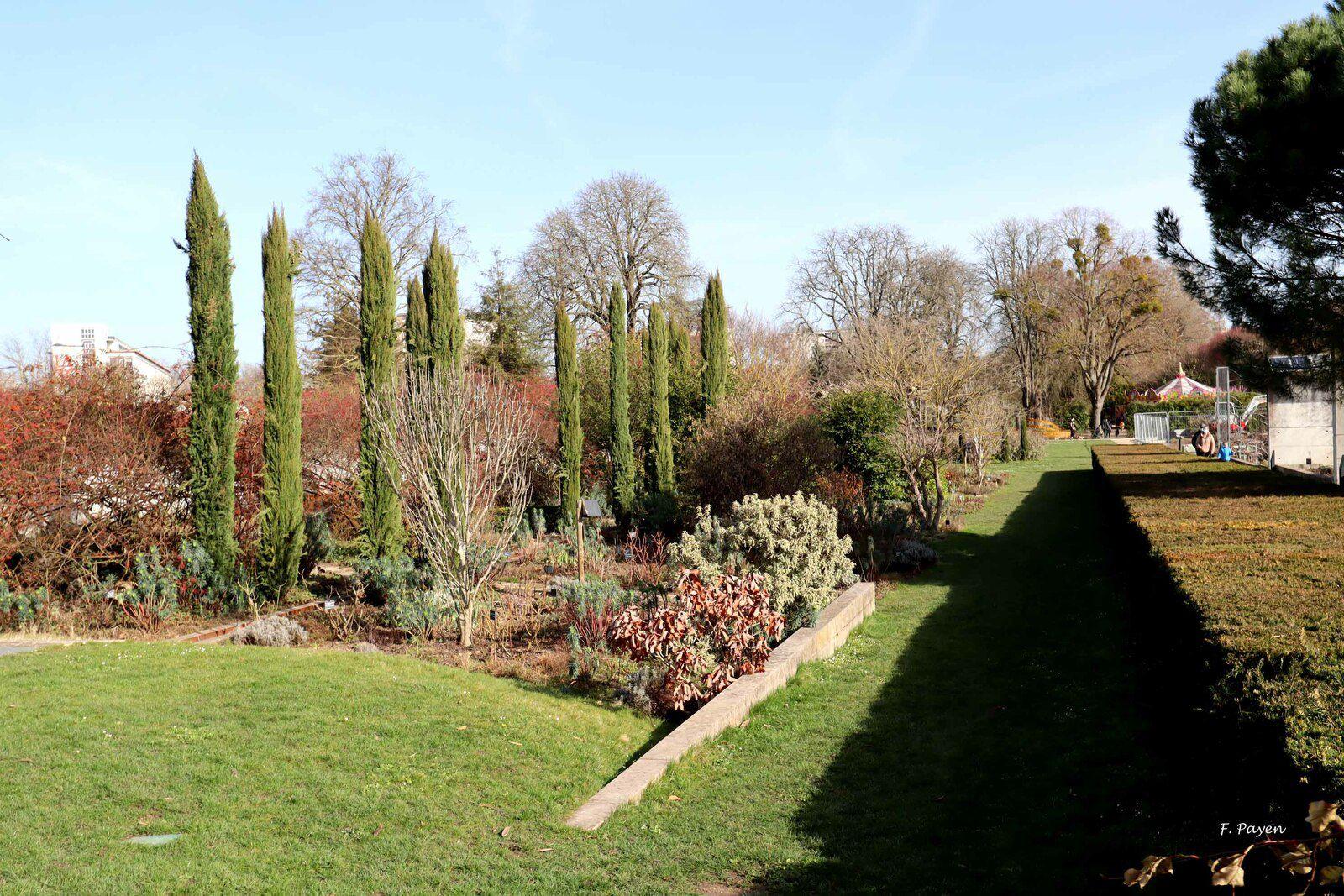 Jardin des Plantes, Orléans.