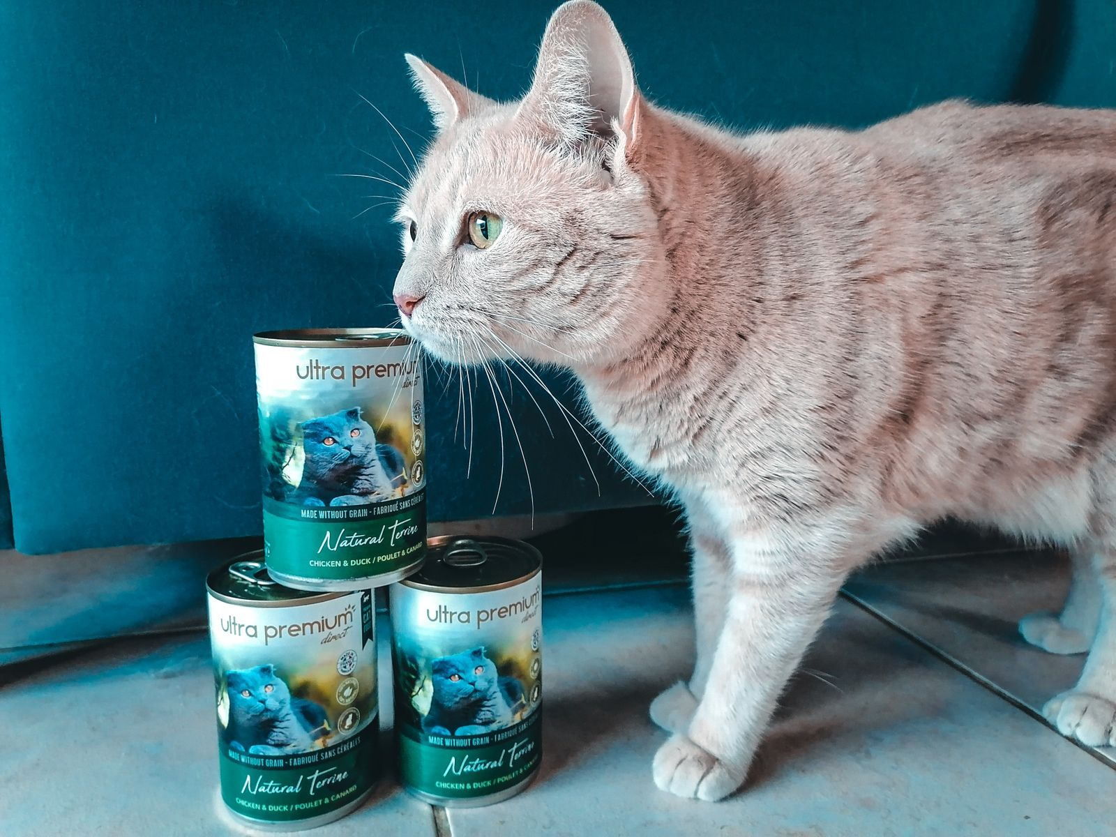 Terrines pour chat Ultra Premium Direct