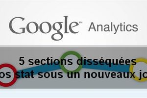 Google Analytique dissection d'une blogueuse
