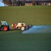 Pesticides : un nouveau plan timide pour réduire la dépendance de l'agriculture française