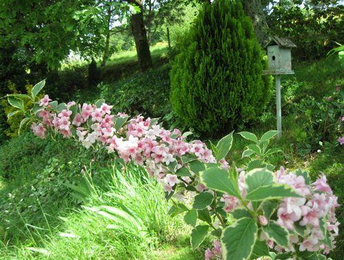 Album - Jardins de mai