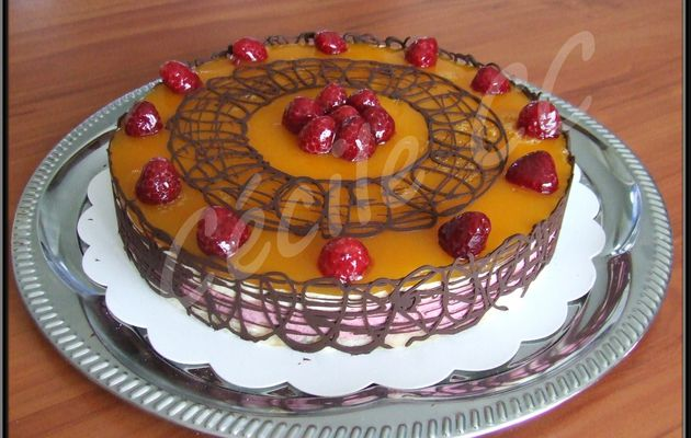 Entremets passion framboise....