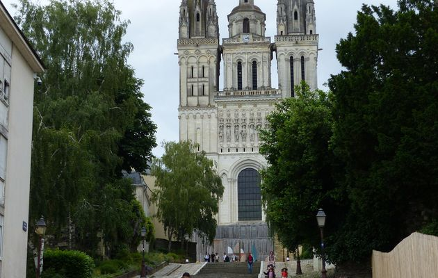 Visite d'Angers
