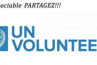 APPEL A CANDIDATURE : Volontariat des Nations Unies (VNU)