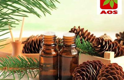 About of Turpentine Oil - Why it is Used as a Solvent?