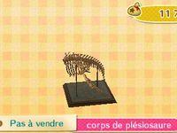 Les fossiles (67 pièces) :