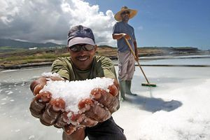 La pointe au sel - Ile de La Réunion