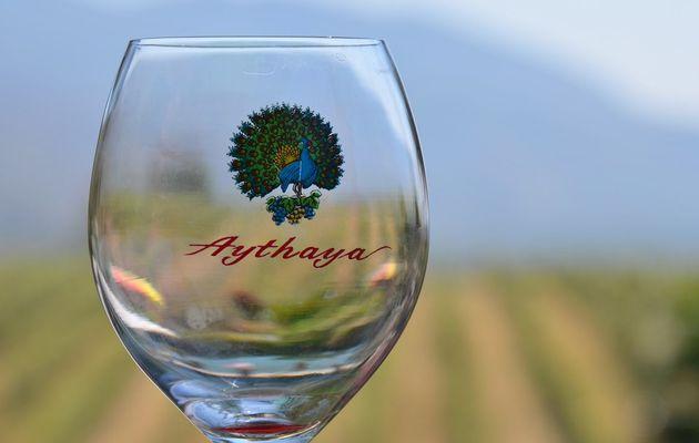 Aythaya Wine : Le plus ancien vignoble birman