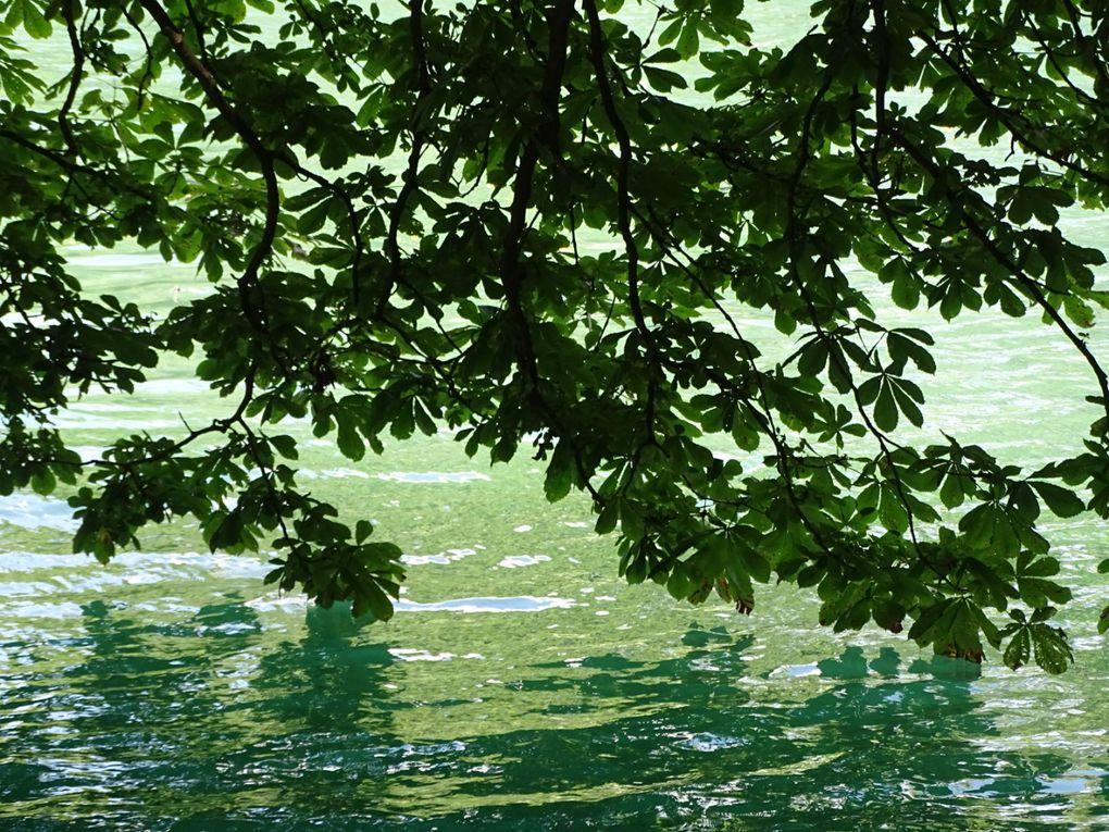 Vacances... Monts du lyonnais... Suite...