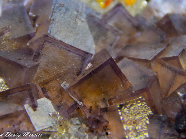 Fluorite (Fluorine) with Sphalerite from Elmwood Mine, Tennessee, USA (size: Small Cabinet)